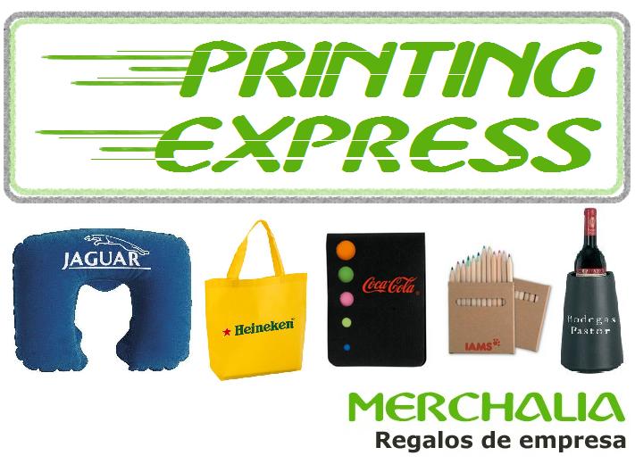 Servicio Printing Express