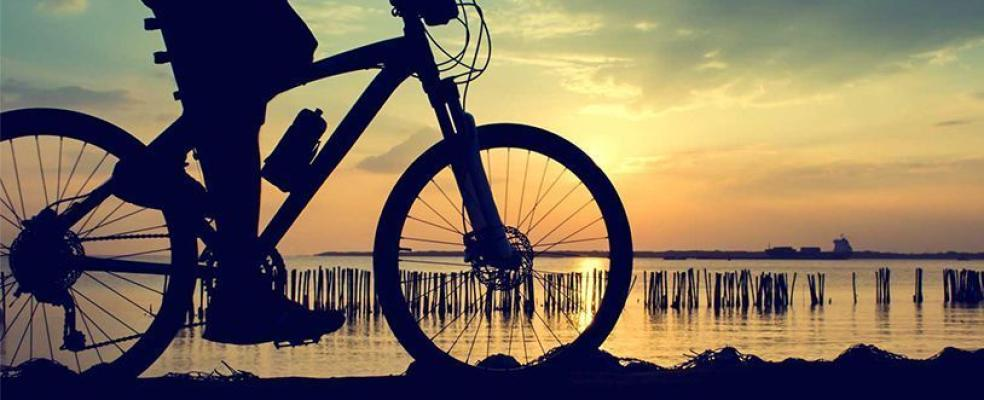 Foto 1 de NPF Bike