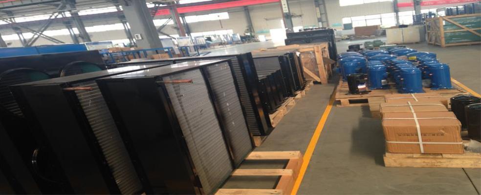Foto 3 de Sinocean Industrial Limited